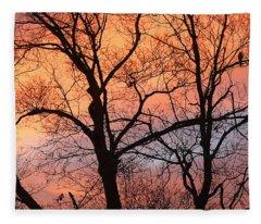 Hawk At Sunrise Fleece Blanket