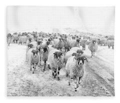 Heading For Home Fleece Blanket