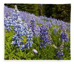 Heavenly Blue Lupins Fleece Blanket