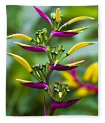 Heliconia Subulata II Fleece Blanket