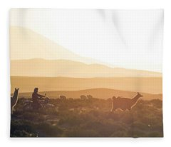 Llama Photographs Fleece Blankets