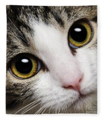 Here Kitty Kitty Close Up Fleece Blanket