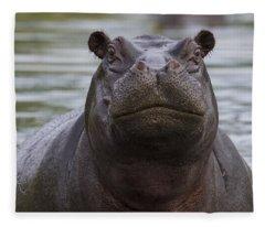 Hippopotamus Bull Khwai River Botswana Fleece Blanket