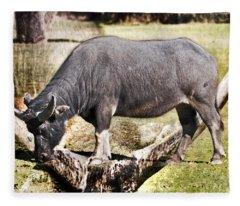 Horn Of A Buffallo Fleece Blanket