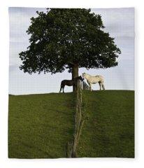 Horse Whisperers   Fleece Blanket
