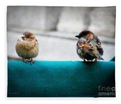 House Sparrows Fleece Blanket