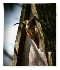 House Wren At Nest Box Fleece Blanket