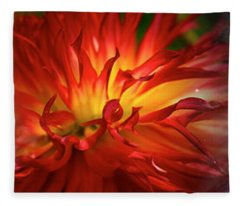 Hubble Galaxy With Red Chrysanthemums Fleece Blanket
