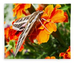 Hummingbird Moth On A Marigold Flower Fleece Blanket