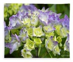 Hydrangeas Galore Fleece Blanket