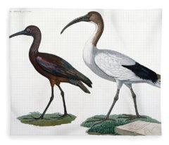Ibises Fleece Blanket