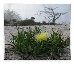 Iceplant Bloom On Carmel Dunes Fleece Blanket