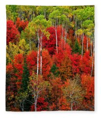 Idaho Autumn Fleece Blanket