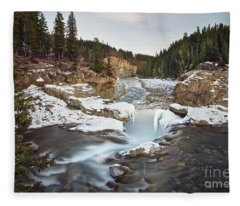 In The Frosty Forests Fleece Blanket