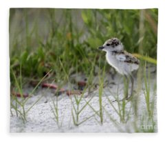 In The Grass - Wilson's Plover Chick Fleece Blanket