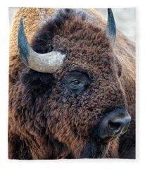 Bison The Mighty Beast Bison Das Machtige Tier North American Wildlife By Olena Art Fleece Blanket