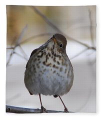 Inquisitive Hermit Thrush Fleece Blanket