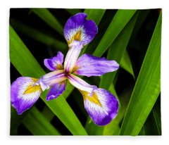 Iris Pinwheel Fleece Blanket