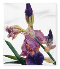 Watercolor Of A Tall Bearded Iris In A Color Rhapsody Fleece Blanket