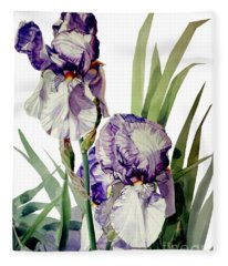 Watercolor Of A Tall Bearded Iris In Violet And White I Call Iris Selena Marie Fleece Blanket