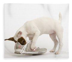 Jack Russell With Sneaker Fleece Blanket