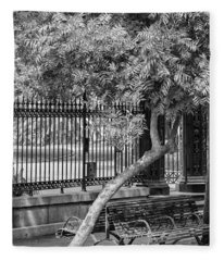 Jackson Square Bench And Tree Fleece Blanket