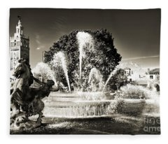 Jc Nichols Memorial Fountain Bw 1 Fleece Blanket