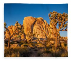 Joshua Tree Sunset Glow Fleece Blanket