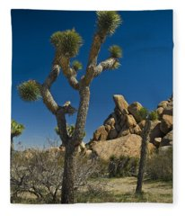 California Joshua Trees In Joshua Tree National Park By The Mojave Desert Fleece Blanket