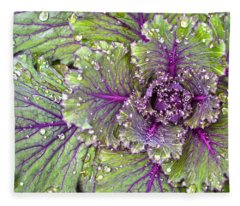Kale Plant In The Rain Fleece Blanket