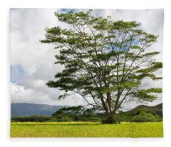Kauai Umbrella Tree Fleece Blanket