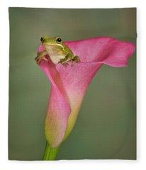 Kermit Peeking Out Fleece Blanket