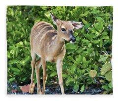 Key Deer Cuteness Fleece Blanket