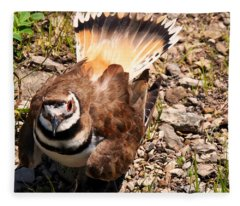 Killdeer On Its Nest Fleece Blanket
