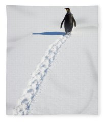 King Penguin And Tracks S Georgia Island Fleece Blanket