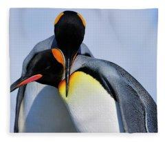 King Penguins Bonding Fleece Blanket