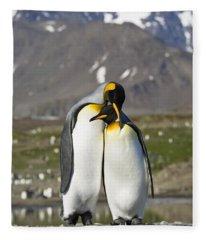 King Penguins Courting St Andrews Bay Fleece Blanket