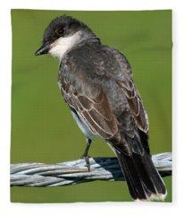 Kingbird On A Wire Fleece Blanket