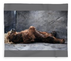Kodiak Brown Bear Taking A Nap Fleece Blanket