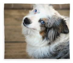 Kora The Australian Shepherd Fleece Blanket