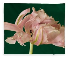 Lacey Tulip Fleece Blanket