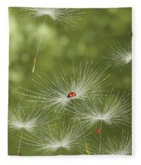 Ladybug Fleece Blanket