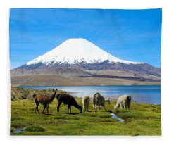 Lake Chungara Chilean Andes Fleece Blanket