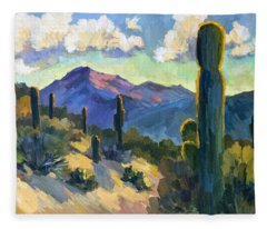 Late Afternoon Tucson Fleece Blanket