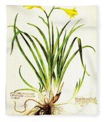 Lemon Daylily Botanical Fleece Blanket