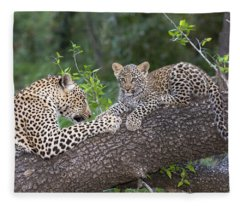 Leopard And Cub Masai Mara Kenya Fleece Blanket