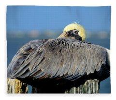 Let Sleeping Pelicans Lie Fleece Blanket