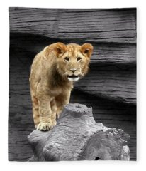 Lion Cub Fleece Blanket