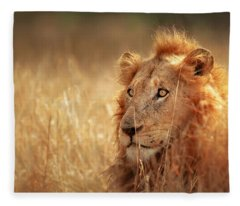 Lion In Grass Fleece Blanket