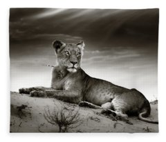 Lioness On Desert Dune Fleece Blanket